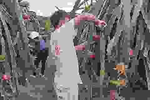 Tham tán thương mại Trung Quốc nói gì về hàng Việt?
