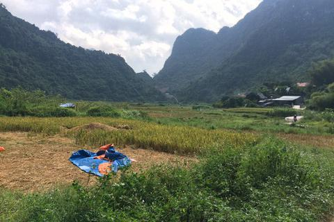 Người dân đòi lại cánh đồng lúa đã cấp cho doanh nghiệp khai thác vàng
