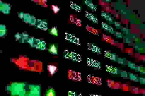 Lập Quỹ bảo vệ nhà đầu tư chứng khoán, phòng trường hợp doanh nghiệp phá sản?