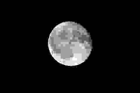 Nga lên kế hoạch đổ bộ mặt trăng bằng robot avatar