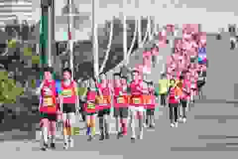 Dàn sao chạy marathon 'đọ' sức bền