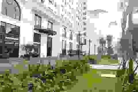 Chiêm ngưỡng vẻ đẹp của khu căn hộ đẳng cấp bậc nhất Long Biên