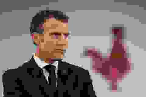 Kịch bản nào chờ Tổng thống Macron?