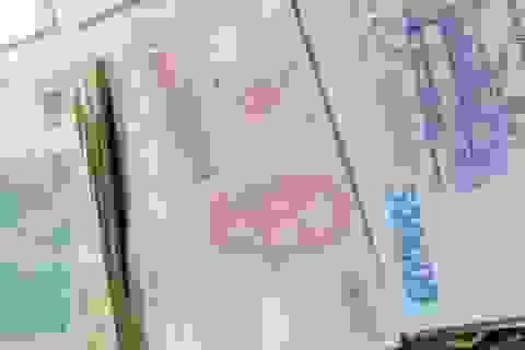 Người dân phản ánh xử lý tội trộm cắp tài sản còn quá nhẹ tại Cà Mau