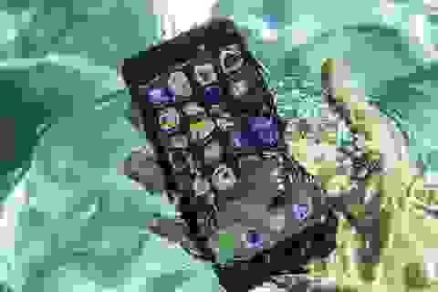 Tính năng chống nước trên iPhone giúp cứu mạng nhóm du khách bị chìm thuyền