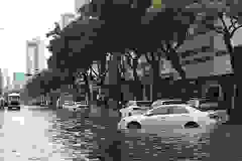 """Mưa lớn gây ngập chưa từng thấy """"nóng"""" nghị trường Đà Nẵng"""