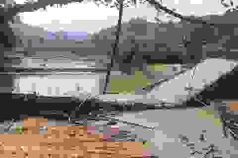 Cầu bê tông chưa xây xong đã đổ sập