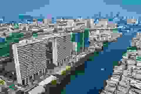 Diamond Lotus Riverside – Xứng đáng là biểu tượng xanh giữa lòng thành phố