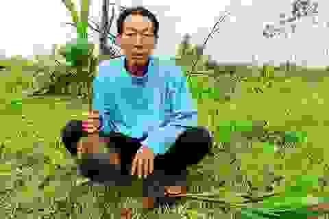 Quảng Bình: Một hộ dân kêu cứu vì bị phá hoại tài sản, hành hung và doạ giết