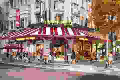 Có một Vienna tráng lệ trong lòng thành phố kỳ quan Hạ Long