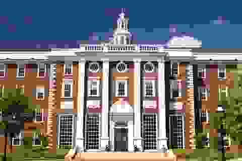 Không đại học Ivy League nào đạt tiêu chuẩn chăm sóc sức khỏe tâm thần cho sinh viên