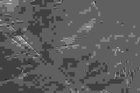 Bí ẩn về những hình vẽ cổ đại ở Peru đã có lời giải?
