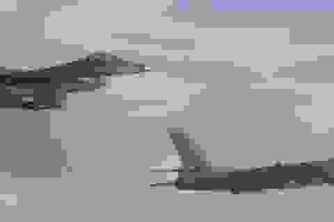 """Trung Quốc gửi cảnh báo """"thống nhất hoặc là chết"""" tới Đài Loan"""