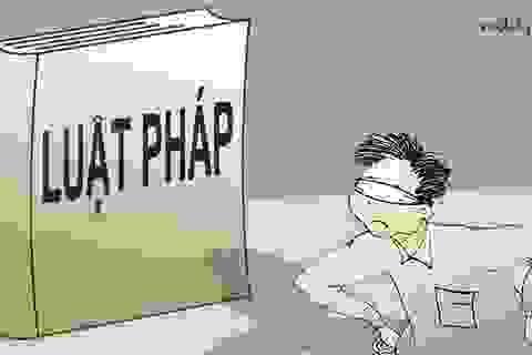 """Những người Việt xấu xí, """"não bé"""", gan to...."""