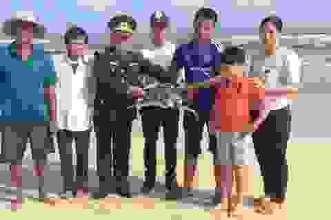 Thả an toàn cá thể vích 14 kg về môi trường biển