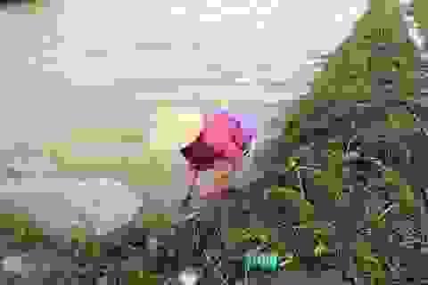 """Ngập lụt, nông dân """"mất"""" Tết Dương lịch ra đồng cứu… lúa"""