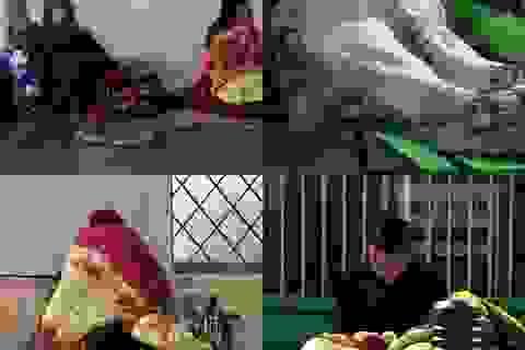 Hà Nội: Người nhà bệnh nhân co ro trong bệnh viện dưới cái rét 9 độ C