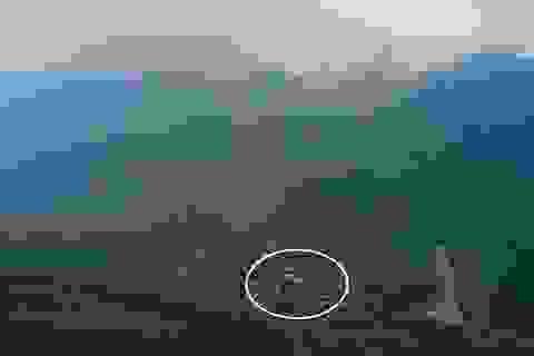 Quảng Ngãi: Nguy cơ sạt lở núi đe dọa hàng trăm học sinh vùng cao