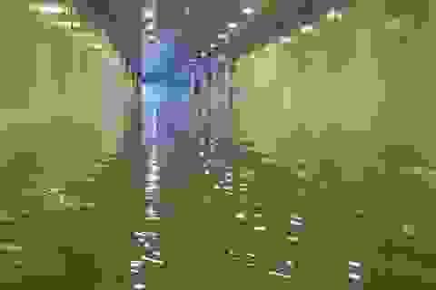Hầm chui 100 tỷ ở Đà Nẵng tê liệt hoàn toàn vì mưa ngập