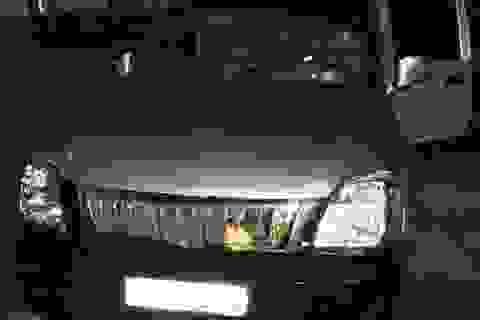 CSGT chốt chặn, bắt ô tô 7 chỗ chở gỗ lậu gắn 2 biển số