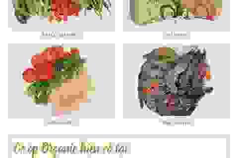 Xuất hiện món Tết phong thủy độc đáo từ thực phẩm hữu cơ