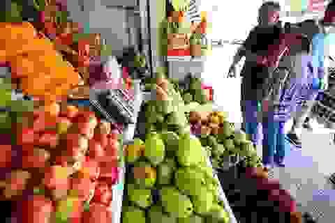Tết Mậu Tuất: Dân chi 126 tỷ đồng mỗi ngày để mua hoa quả ngoại ăn Tết