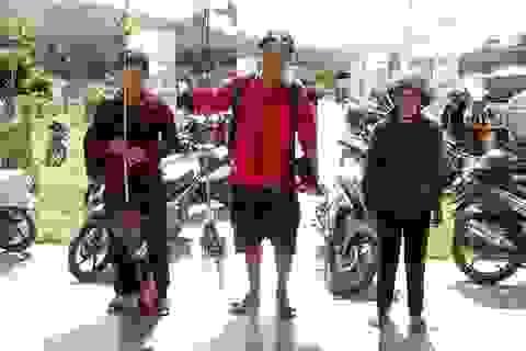 """Quảng Nam: """"Mỏ vàng"""" trên đỉnh Ngọc Linh"""