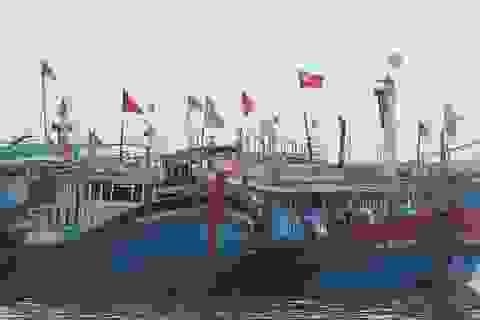 Đầu xuân, ngư dân nô nức mở biển