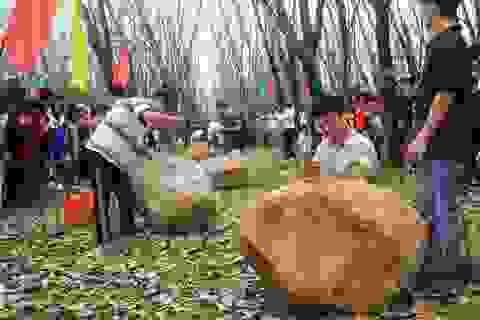 Hàng chục trai tráng thi chẻ đá đầu năm mới