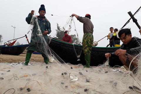 Thanh Hóa: Những chuyến ra khơi đầu năm, ngư dân trúng đậm cá Kiền