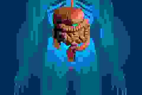 Đường ruột tốt giúp ngăn ngừa sốc nhiễm khuẩn chết người