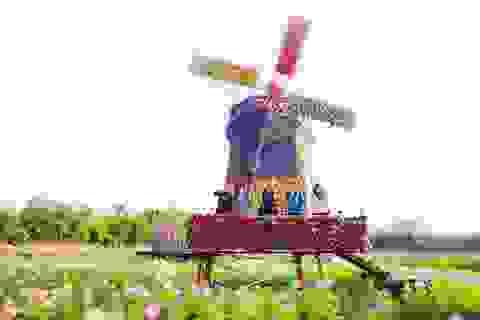 """Du xuân – đừng quên ghé thăm """"Thành phố ngàn hoa giữa lòng Hà Nội"""""""