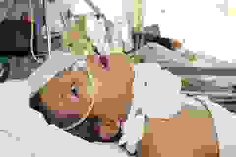Mẹ lâm trọng bệnh, bé trai 8 tháng tuổi khát sữa