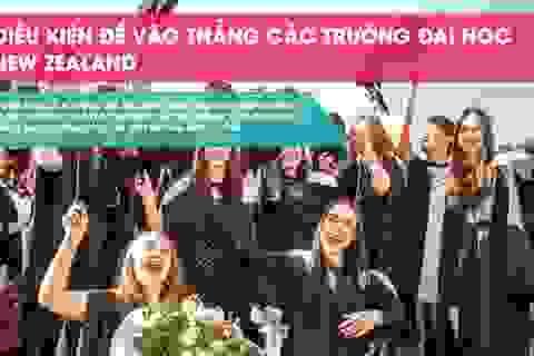 5/8 trường đại học công lập của New Zealand tuyển thẳng học sinh Việt Nam