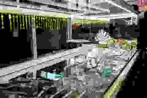 Táo tợn dùng búa cướp tiệm vàng ở Bình Dương