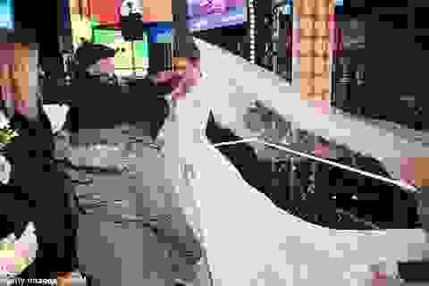 Người đẹp Mỹ kết hôn trong đêm giao thừa