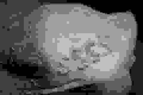 Hình xăm đầu tiên thế giới được phát hiện trên xác ướp của Gebelein