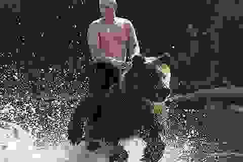 Ông Putin nói gì về bức ảnh cưỡi gấu gây xôn xao dư luận?