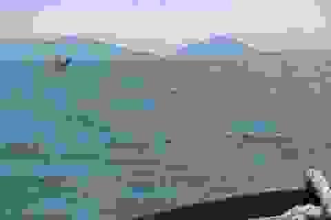 Tàu cá bị đâm chìm trên biển, 2 người được cứu sống