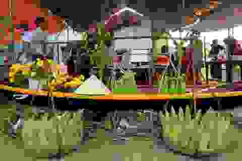 """Hơn 10.000 trái bắp sẽ phục vụ du khách trong """"Ngày hội bắp nếp"""""""