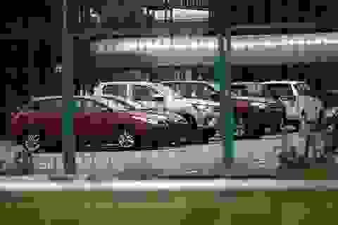 Khủng hoảng phân khúc xe nhập - Chỉ có 40 chiếc xe du lịch về Việt Nam trong tuần