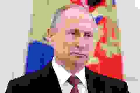 Điện Kremlin tiết lộ lý do ông Putin tái đắc cử