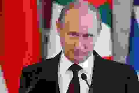 Quỹ của ông Putin chi bao nhiêu cho chiến dịch tái tranh cử?