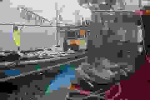 Hội Nghề cá phản đối Trung Quốc đơn phương cấm đánh bắt cá ở Biển Đông