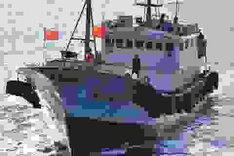 """Tàu cá Trung Quốc lộng hành: Hạm đội """"bóng ma"""""""