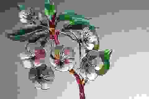 Tại sao cành hoa này có giá… 32 tỷ đồng?