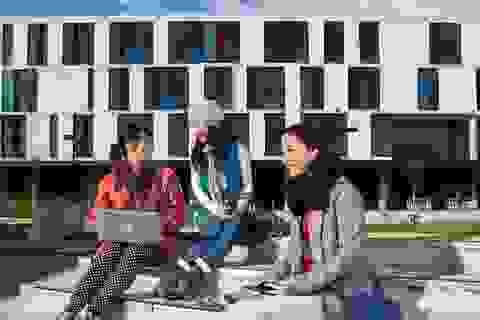 Tặng phí visa du học vào 82 trường New Zealand tại Ngày hội tuyển sinh