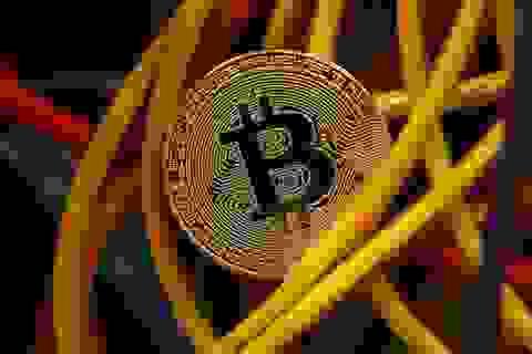 600 máy đào Bitcoin bị đánh cắp: Vụ trộm lớn nhất lịch sử