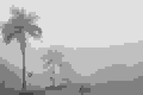 Sương mù dày đặc bao phủ thành Vinh
