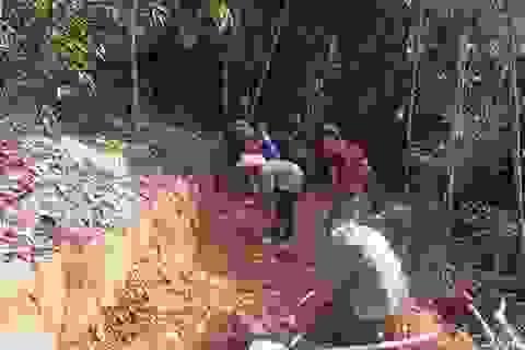 Hơn 700 người cùng góp sức mở đường xuyên bản làng